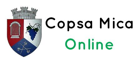 logo_negru_transparent