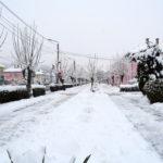 Aleea Castanilor iarna